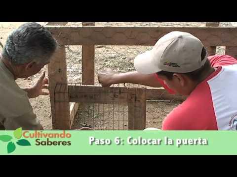 de navajas gallero express partido campeón gallos de mexicali