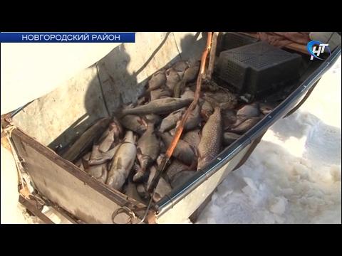 У берегов озера Ильмень прошел профилактический рейд МЧС