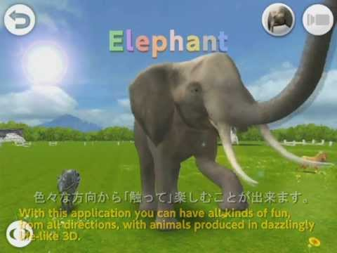 Video of REAL ANIMALS HD (Full)