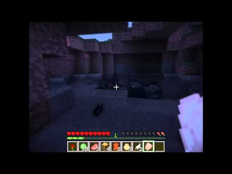 SBF Minecraft и Fess25Rus