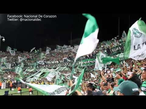 Los Del Sur / Soy del verde desde que nací - Dia del hincha verde / Nacional vs jaguares - Los del Sur - Atlético Nacional - Colombia - América del Sur