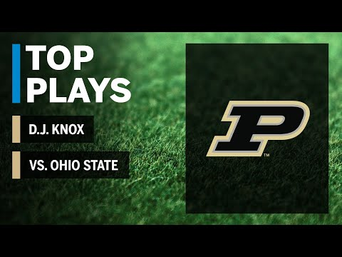 Top Plays: D.J. Knox Highlights Vs. Ohio State Buckeyes | Big Ten Football