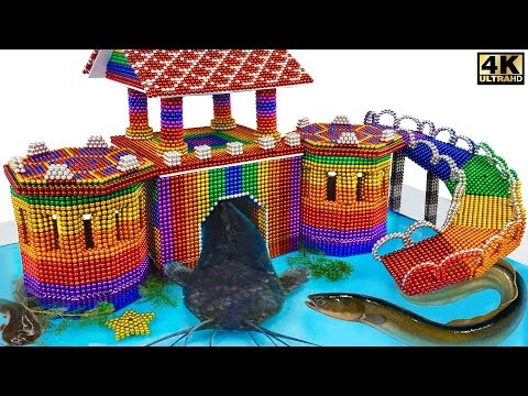 Play this video DIY - How To Build Castle Catfish Eel House From Magnetic Balls  Satisfying   Manget Satisfying