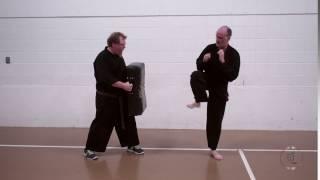 Front Leg Side Kick