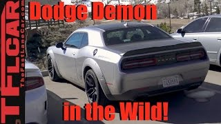 2018 Dodge Challenger Demon Prototype Spied in the Wild! by The Fast Lane Car