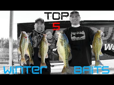 Top 5 Baits for Winter Bass Fishing