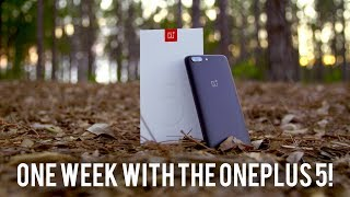 Here is my OnePlus 5 review! If you want a OnePlus 5 unboxing let me know. Also watch my oneplus 5 camera review and camera test for a more detailed look at the new Dual Camera with camera samples.  Is this the best phone under $500?  Is this the best budget phone under $500? For the money its one the best Phones for 2017.  If you want to see a OnePlus 5 vs Galaxy S8 or OnePlus 5 vs iPhone 7 Plus Subscribe!OnePlus 5 Camera Review: https://youtu.be/6RlXKu4A0igFollow me on Social Media:Twitter: http://www.twitter.com/superscientificGoogle Plus: http://plus.google.com/+dannywinget/Instagram: http://www.instagram.com/superscientificFacebook: http://www.facebook.com/DWReviews