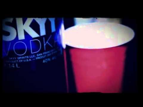 Teddy T   She Wildin feat  R O Z) (Official Video)