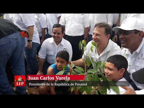 Panamá lleva a cabo el III Gran Día Nacional de Reforestación