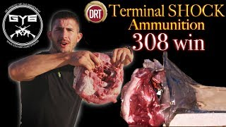 DRT 308 win TERMINAL SHOCK Ammo vs. Pork Shoulder & BRICK