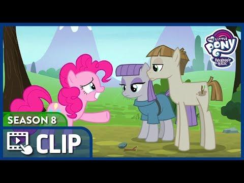 ▷Clip   Pinkie Meets Maud's Boyfriend (The Maud Couple)   MLP: FiM (Season 8) [HD]