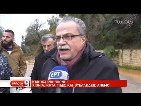 Σοβαρά προβλήματα έφερε η «Χιόνη»-Απαγορευτικό απόπλου από Πειραιά, Ραφήνα, Λαύριο | 14/2/2019 | ΕΡΤ
