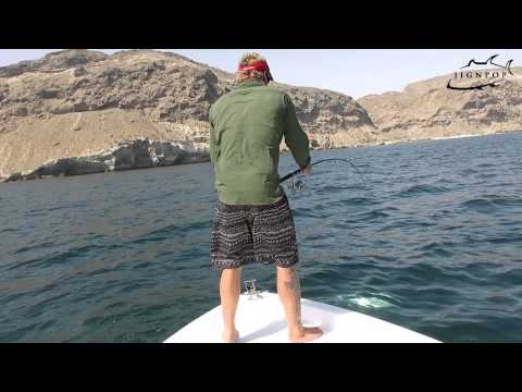 JIGNPOP: Inshore Fishing in Southern Oman, March 2013