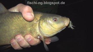 Рыбалка в Германии 28 -  Ловля карпа ночью, ловля линя, ловля угря