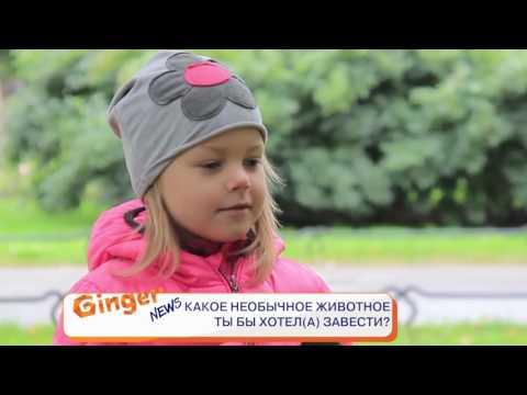 "Телеканал Ginger HD на VI Суперфинале ""Театр"""