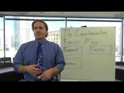 The Countervailing Forces Model