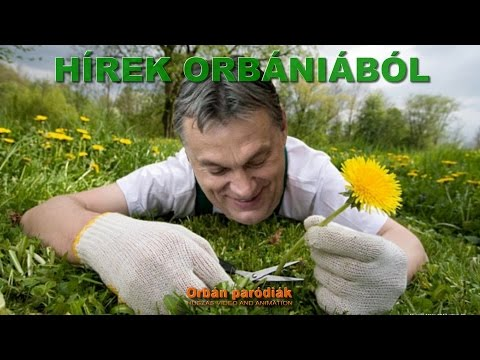 Rövid hírek Orbániából