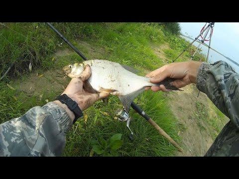 рыбалка видео на фидергам видео