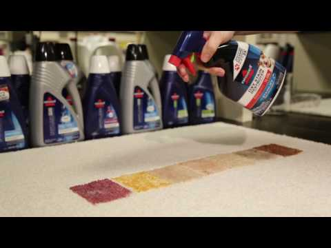 BISSELL® Oxy Stain Destroyer Pet for Carpet and Upholstery - Multiple Stains Demonstration Product 1775