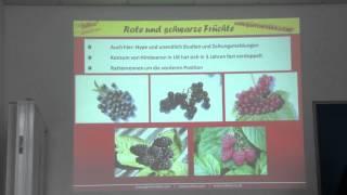 #791 Gesundheitswert von roten und schwarzen Früchten - Easy Gardening Teil 30 von 35
