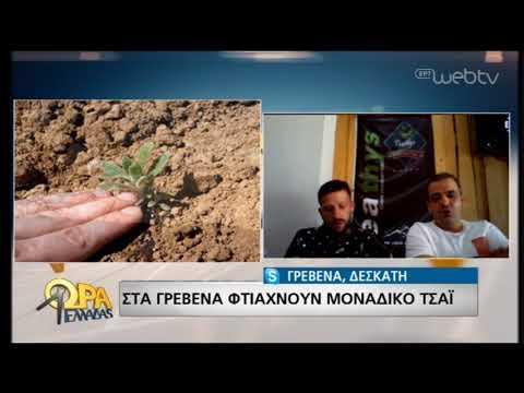 Το ξεχωριστό τσάι της Δεσκάτης Γρεβενών! | 27/05/19 | ΕΡΤ