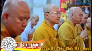 Kinh Trung Bộ 110 (Tiểu Kinh Mãn Nguyệt) - Người chân chánh (28/09/2008) - Thích Nhật Từ