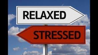 Чтобы в жизни было меньше стресса, избавьтесь от этих привычек