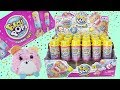 PUSHMI UPS New From Pikmi Pops Surprise, Full Box Unboxing! Ultra rare Pikmi Found!