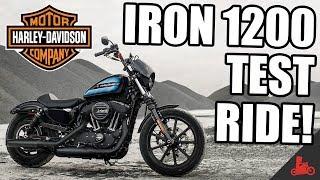 8. IRON 1200 Test Ride! - 2018 Harley-Davidson Sportster