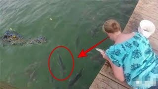Video Awalnya beri makan ikan disungai, tiba2 kejadian berikutnya mengagetkan semua orang MP3, 3GP, MP4, WEBM, AVI, FLV Februari 2019