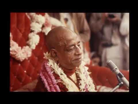 Video Prabhupada 0008 - Krishna Claims That 'I Am Everyone's Father' download in MP3, 3GP, MP4, WEBM, AVI, FLV January 2017