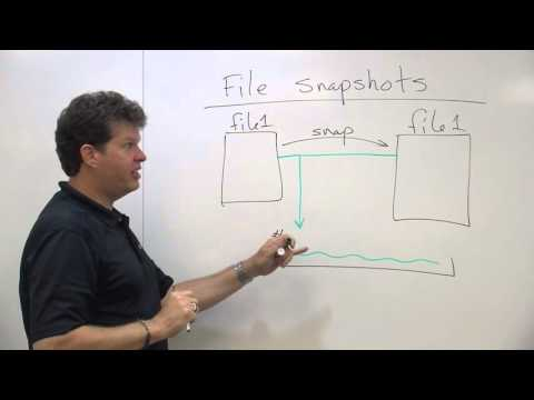 File Snapshots