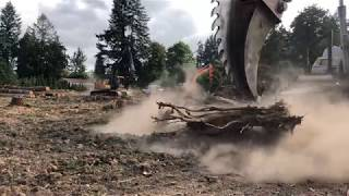 Video Removing stumps the COOL way! MP3, 3GP, MP4, WEBM, AVI, FLV Maret 2019