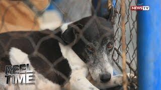 Ayon sa founder ng Help MAS Dogs Citizen Initiative na si Li-An Ascalon, isinasailalim sa euthanasia ang mga aso sa mga...