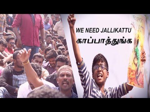 Emotional Youngsters Jallikattu Pr ..
