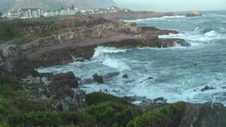 Hermanus South Africa  City new picture : whalewatching in Hermanus, South Africa, Beobachtung von Walen in Südafrika