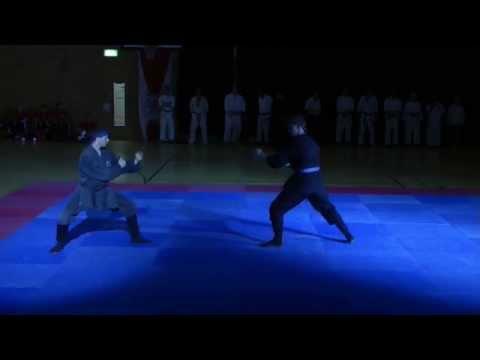 Taijutsu am Galaabend des Kampfsports 2014