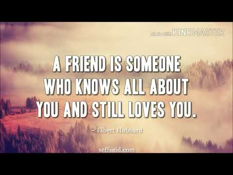 Friendship quotes - Best friends quotes