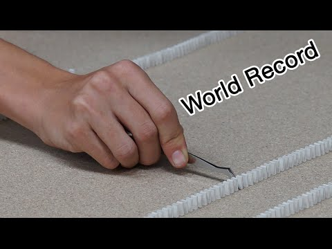 Guinness World Record - Most mini dominoes toppled (2,000 Dominoes) - Extra Video