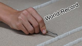 Guinness World Record - Most Mini Dominoes Toppled (2,000 Dominoes)