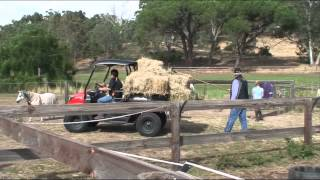5. Kioti UTV Mechron 2200.wmv