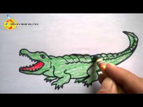 Vẽ con cá sấu/How to Draw a Crocodile