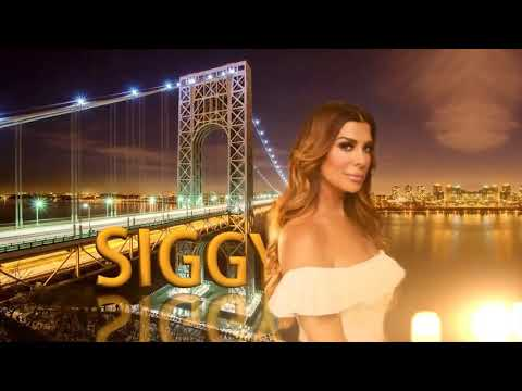 The Real Housewives of New Jersey Season 8 Fanmade Intro (Version 1) HD