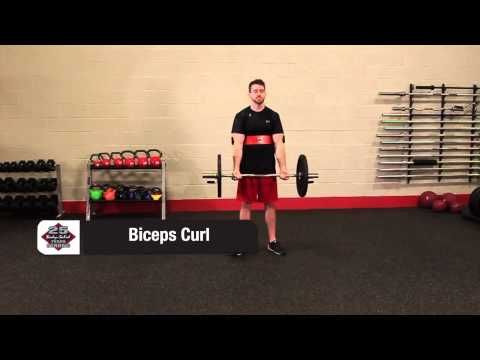 Body-Solid 25th Anniversary Bicep Bomber | Fitness Direct