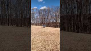 5. Mongoose 70 Wheelie