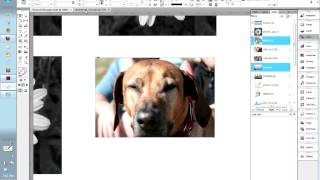 Donna Caldwell CS 72 11A Adobe InDesign 1 Links Panel 04 18 2013