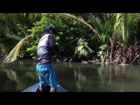 "Papuan Spottail Bass Fishing With ""mars Kayu 71rfx""by Gong Lei"
