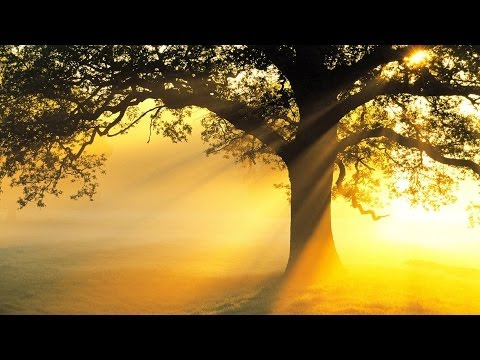 3 HOURS Best Relaxing Music Minimalist | Voice | Meditation – Relax – Stress Relief – Spa