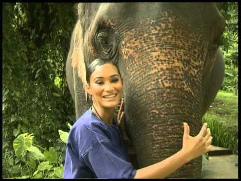 Top Billing explores magical Thailand
