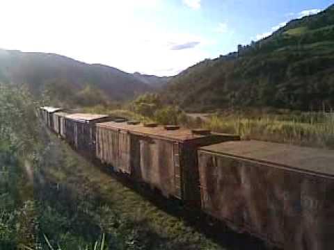 Trem em Faria lemos